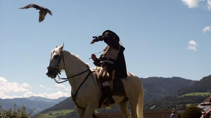 Giochi gratis con cavalli giochi gratis con cavalli gioca for Giochi di cavalli da corsa